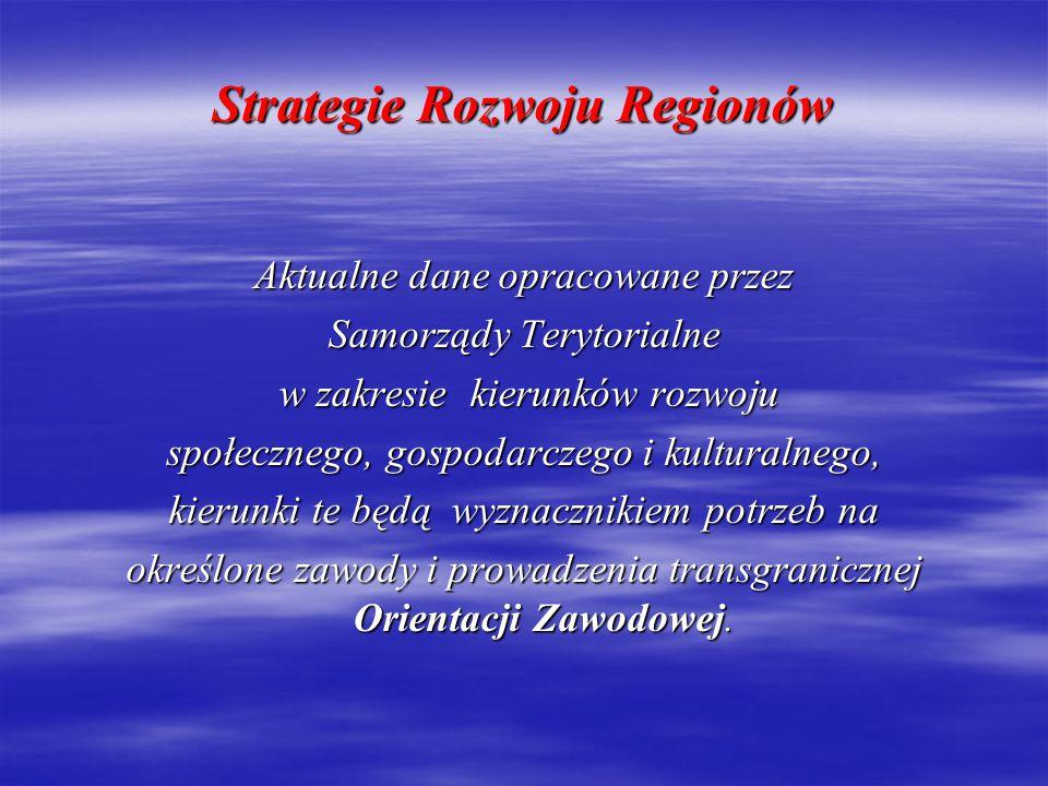 Wizja Euroregionu Nysa Euroregion Neisse – Nisa – Nysa to obszar, który rozwija się dzięki współpracy transgranicznej pomiędzy władzami samorządowymi, organizacjami i ludźmi w każdej dziedzinie życia ludzkiego.