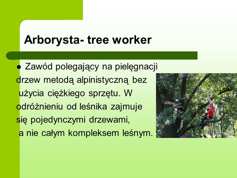 Arborysta- tree worker Zawód polegający na pielęgnacji drzew metodą alpinistyczną bez użycia ciężkiego sprzętu. W odróżnieniu od leśnika zajmuje się p