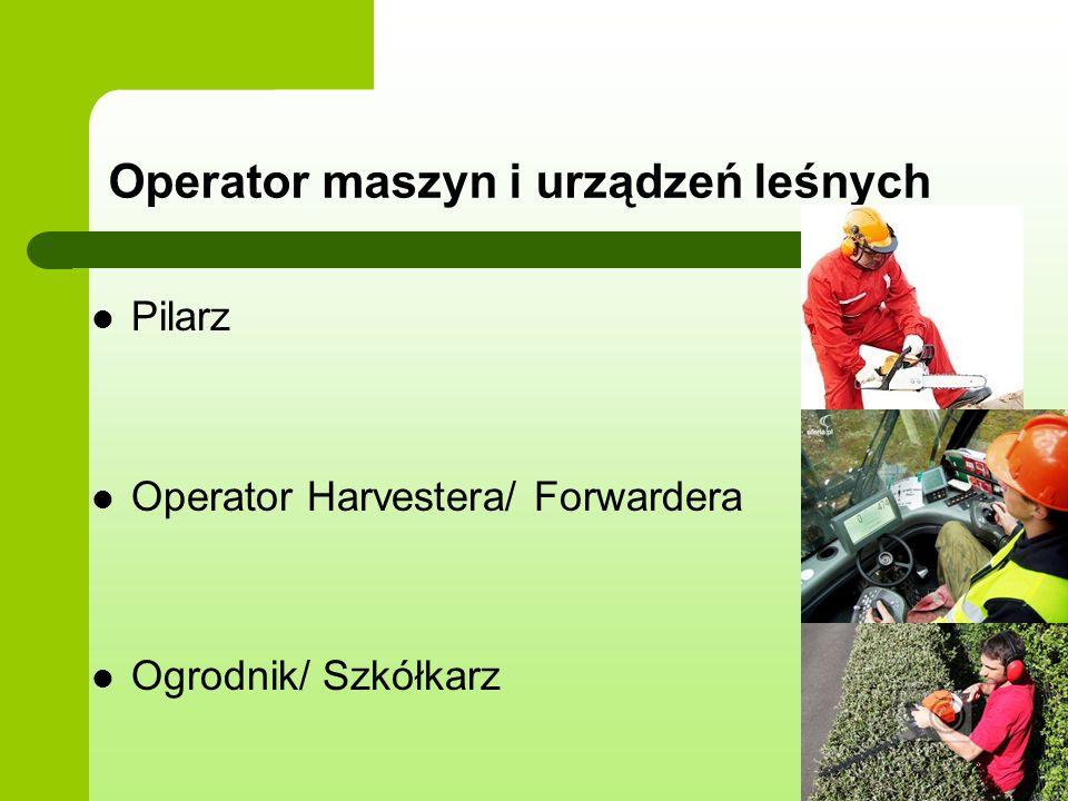 Operator maszyn i urządzeń leśnych Pilarz Operator Harvestera/ Forwardera Ogrodnik/ Szkółkarz