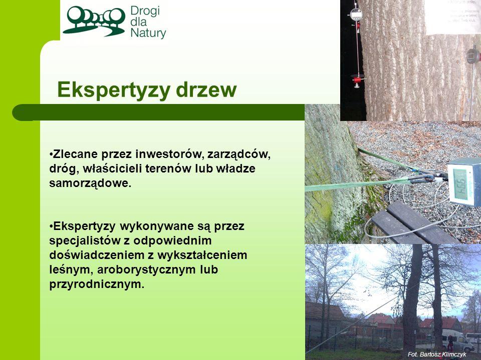 Ekspertyzy drzew Fot. Bartosz Klimczyk Zlecane przez inwestorów, zarządców, dróg, właścicieli terenów lub władze samorządowe. Ekspertyzy wykonywane są