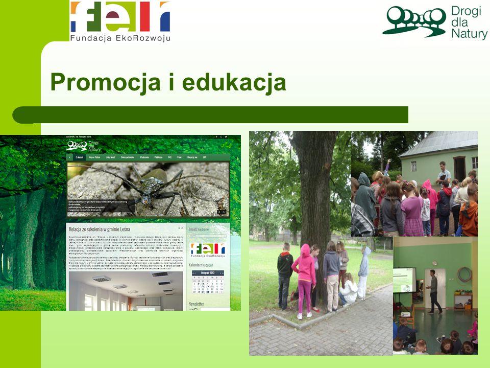 Promocja i edukacja