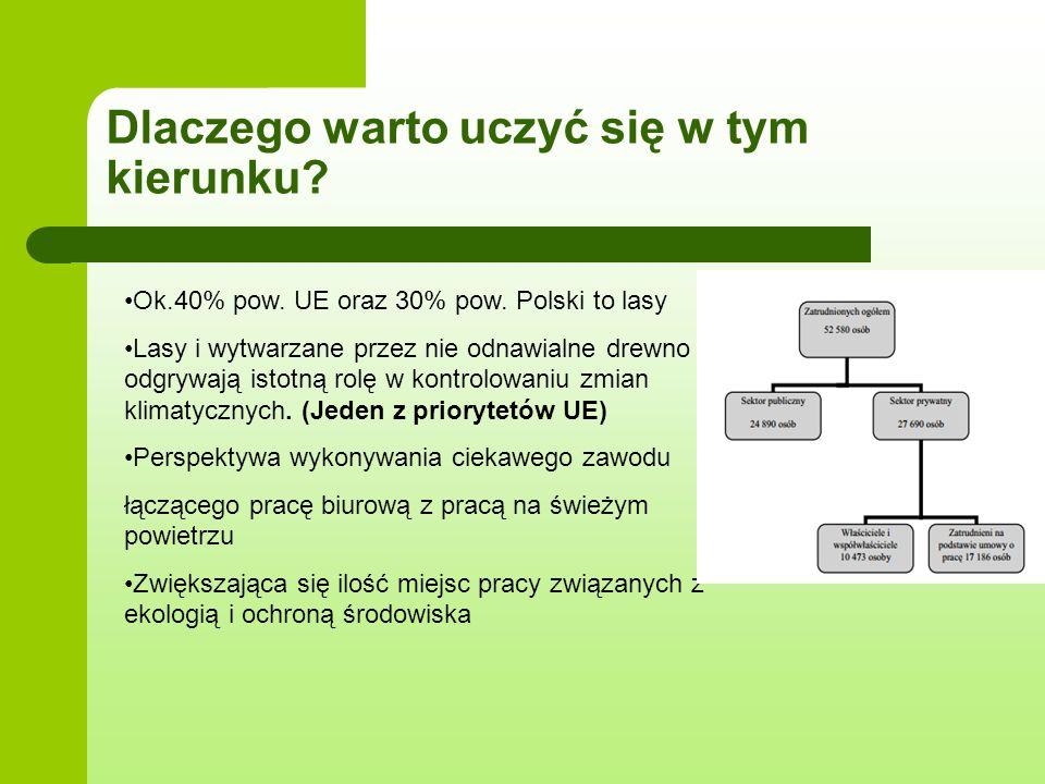 Dlaczego warto uczyć się w tym kierunku? Ok.40% pow. UE oraz 30% pow. Polski to lasy Lasy i wytwarzane przez nie odnawialne drewno odgrywają istotną r