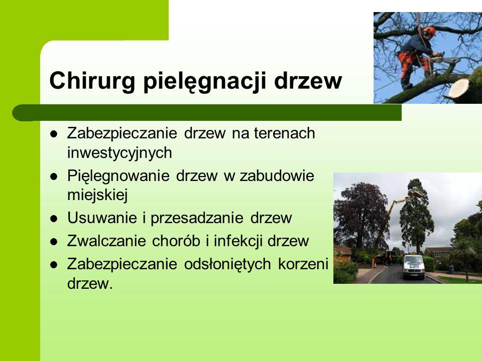 Chirurg pielęgnacji drzew Zabezpieczanie drzew na terenach inwestycyjnych Pięlegnowanie drzew w zabudowie miejskiej Usuwanie i przesadzanie drzew Zwal