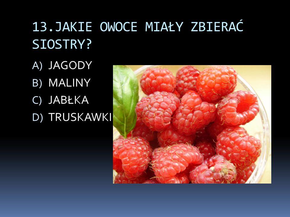 13.JAKIE OWOCE MIAŁY ZBIERAĆ SIOSTRY? A) JAGODY B) MALINY C) JABŁKA D) TRUSKAWKI