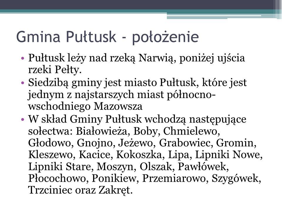 Gmina Pułtusk - położenie Pułtusk leży nad rzeką Narwią, poniżej ujścia rzeki Pełty. Siedzibą gminy jest miasto Pułtusk, które jest jednym z najstarsz