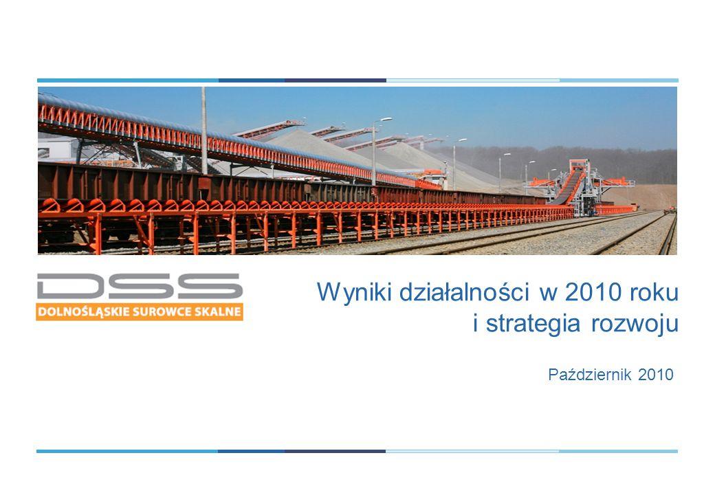 Październik 2010 Wyniki działalności w 2010 roku i strategia rozwoju