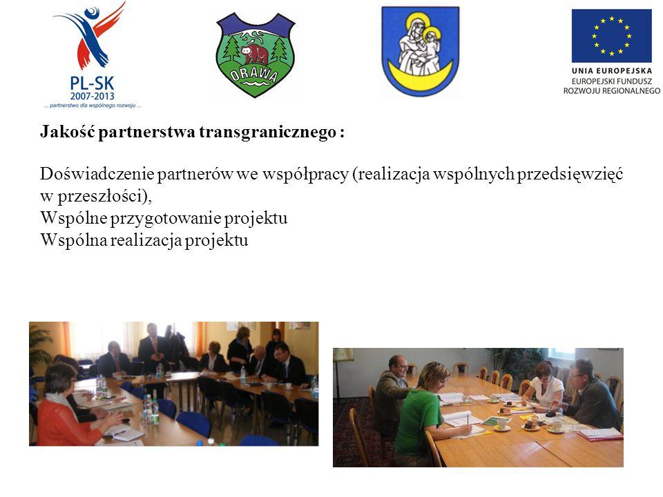 Jakość partnerstwa transgranicznego : Doświadczenie partnerów we współpracy (realizacja wspólnych przedsięwzięć w przeszłości), Wspólne przygotowanie