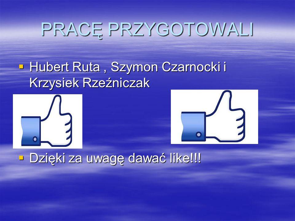 PRACĘ PRZYGOTOWALI  Hubert Ruta, Szymon Czarnocki i Krzysiek Rzeźniczak  Dzięki za uwagę dawać like!!!