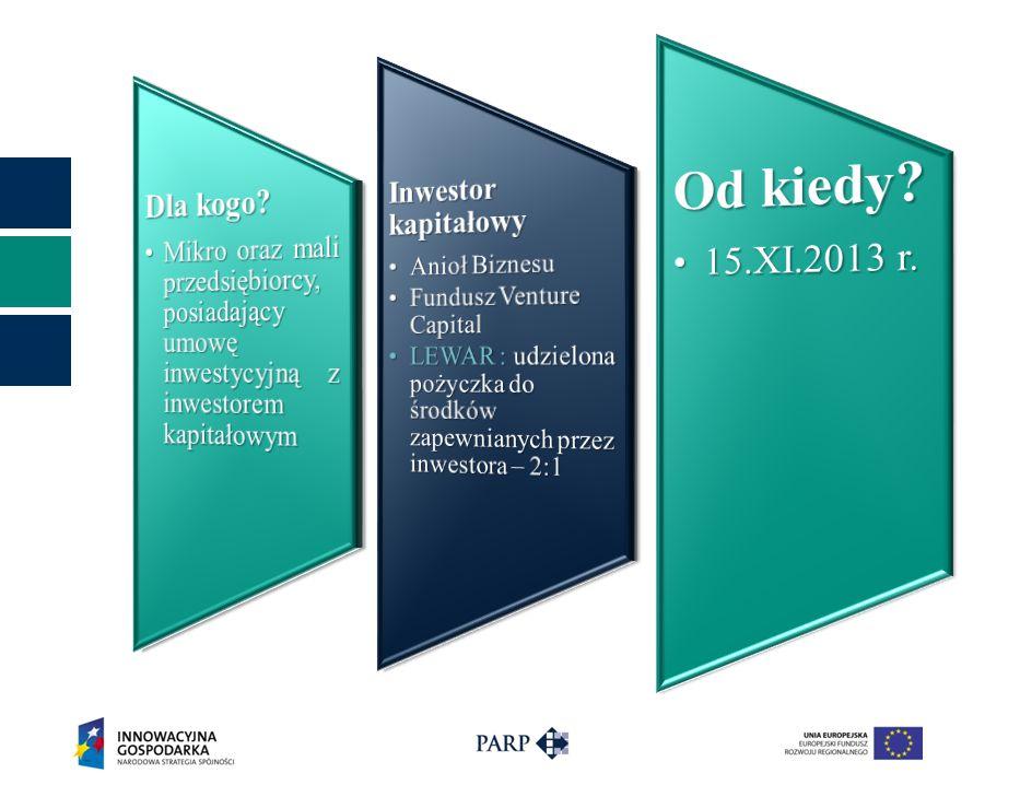 Rozporządzenie Ministra Rozwoju Regionalnego z dnia 13 czerwca 2013 r.