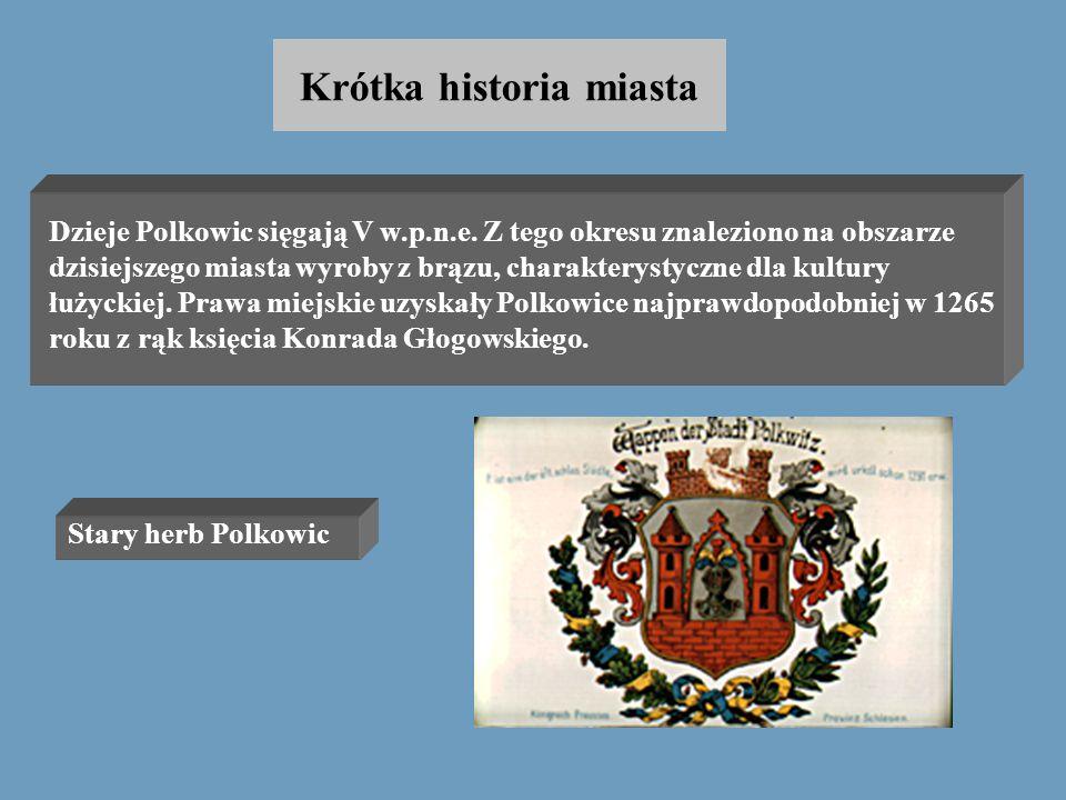 Autorzy: Małgorzata Kaczmarek Dorota Gołębiowska Polkowice - tu warto mieszkać ! Temat: