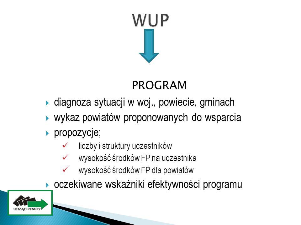 PROGRAM  diagnoza sytuacji w woj., powiecie, gminach  wykaz powiatów proponowanych do wsparcia  propozycje; liczby i struktury uczestników wysokość