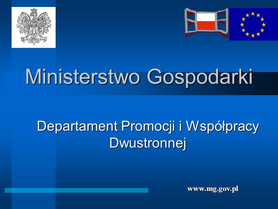 Ministerstwo Gospodarki Departament Promocji i Współpracy Dwustronnej www.mg.gov.pl
