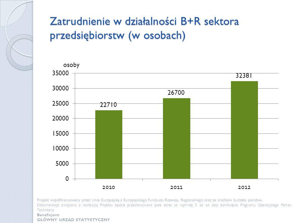 Zatrudnienie w działalności B+R sektora przedsiębiorstw (w osobach) Projekt współfinansowany przez Unię Europejską z Europejskiego Funduszu Rozwoju Re