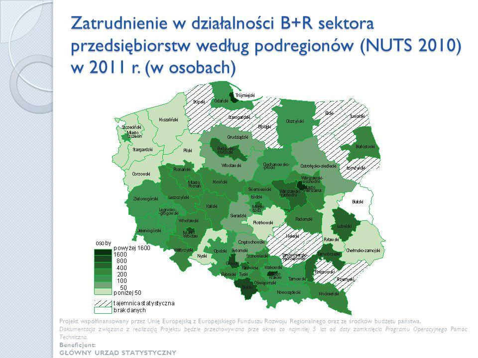 Zatrudnienie w działalności B+R sektora przedsiębiorstw według podregionów (NUTS 2010) w 2011 r. (w osobach) Projekt współfinansowany przez Unię Europ