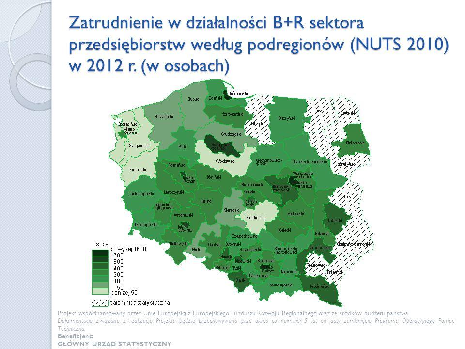 Zatrudnienie w działalności B+R sektora przedsiębiorstw według podregionów (NUTS 2010) w 2012 r. (w osobach) Projekt współfinansowany przez Unię Europ