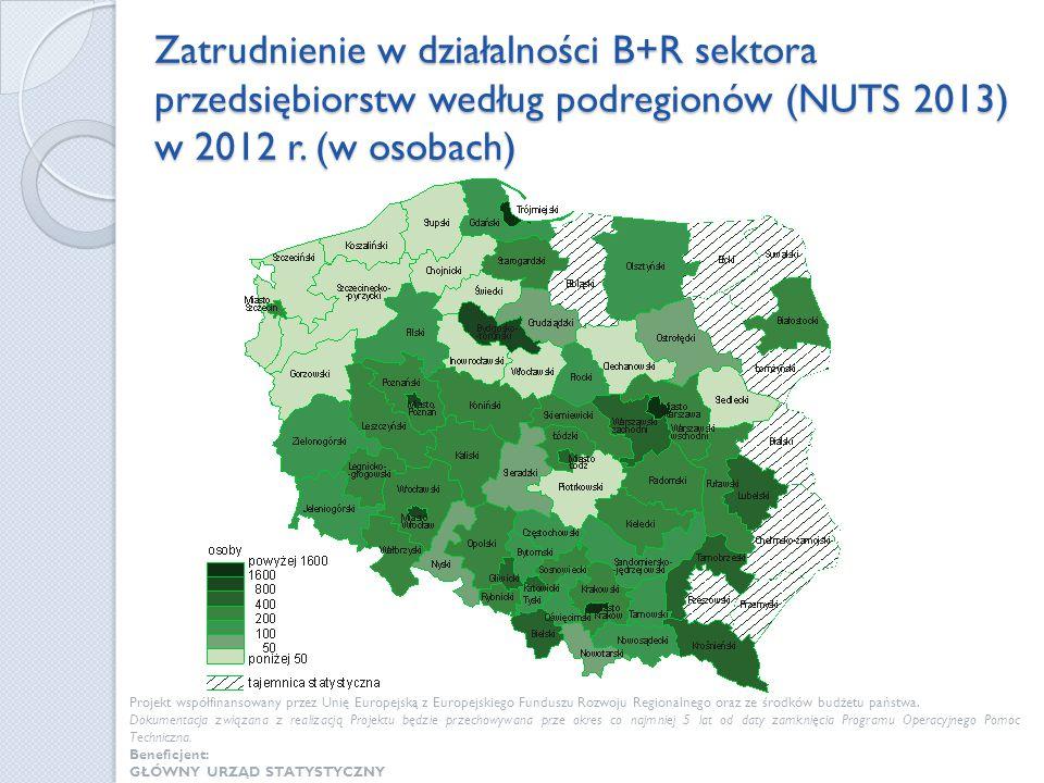 Zatrudnienie w działalności B+R sektora przedsiębiorstw według podregionów (NUTS 2013) w 2012 r. (w osobach) Projekt współfinansowany przez Unię Europ