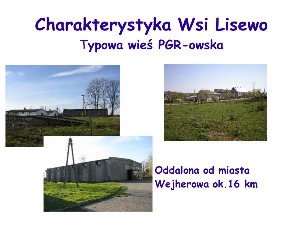 Lisewo oddalone od najbliższego miasta Wejherowa 16 km i oddalona od głównej drogi 3 km.