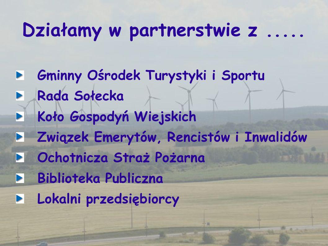 Działamy w partnerstwie z..... Gminny Ośrodek Turystyki i Sportu Rada Sołecka Koło Gospodyń Wiejskich Związek Emerytów, Rencistów i Inwalidów Ochotnic