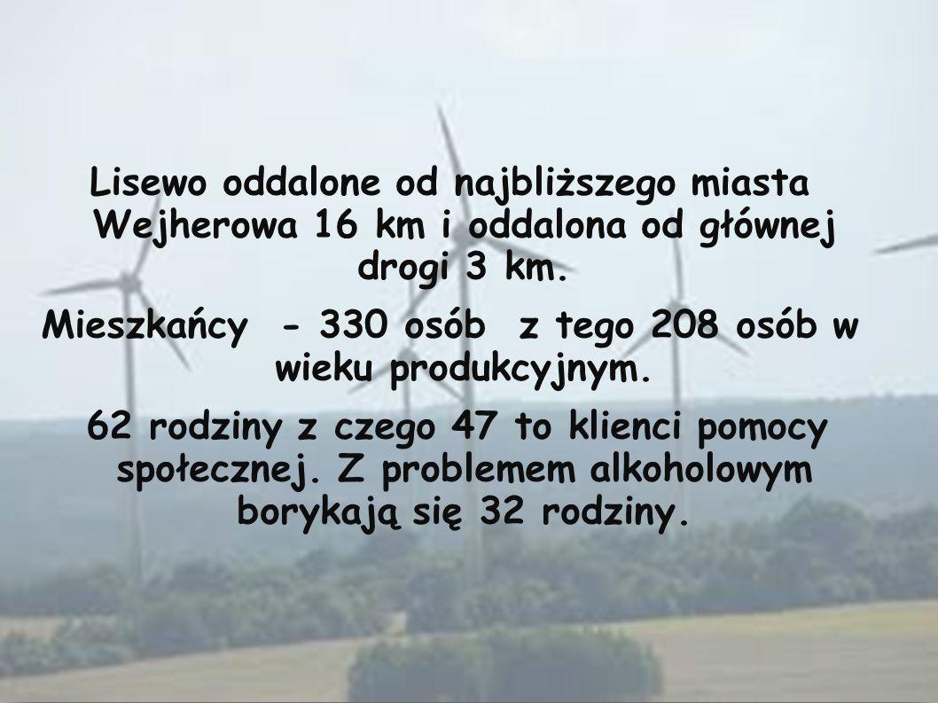 Lisewo oddalone od najbliższego miasta Wejherowa 16 km i oddalona od głównej drogi 3 km. Mieszkańcy - 330 osób z tego 208 osób w wieku produkcyjnym. 6