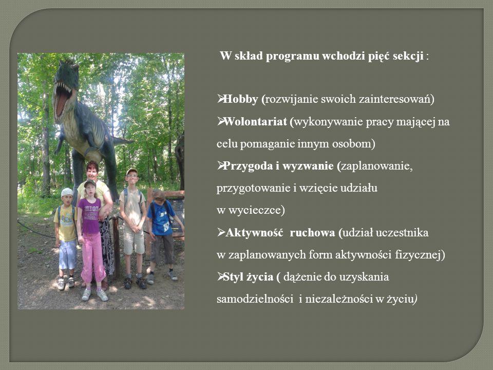 W skład programu wchodzi pięć sekcji :  Hobby (rozwijanie swoich zainteresowań)  Wolontariat (wykonywanie pracy mającej na celu pomaganie innym osobom)  Przygoda i wyzwanie (zaplanowanie, przygotowanie i wzięcie udziału w wycieczce)  Aktywność ruchowa (udział uczestnika w zaplanowanych form aktywności fizycznej)  Styl życia ( dążenie do uzyskania samodzielności i niezależności w życiu)