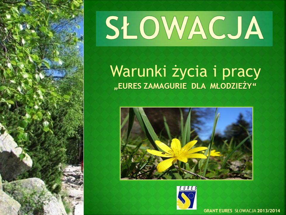 402 124 Ogólna liczba bezrobotnych na Słowacji 70 508 Ogólna liczba bezrobotnych młodych ludzi w wieku 20-25 lat 14 159 Ogólna liczba bezrobotnych młodych ludzi w wieku poniżej 20 lat Centralny Urząd Pracy, Spraw Socjalnych i Rodziny (luty 2014 r.)