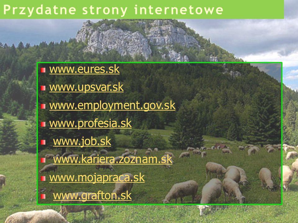 www.eures.sk www.upsvar.sk www.employment.gov.sk www.profesia.sk www.job.sk www.kariera.zoznam.sk www.mojapraca.sk www.grafton.sk Przydatne strony int