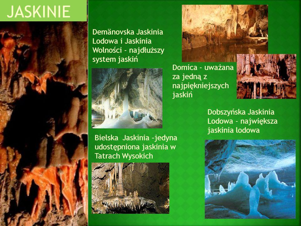 Bielska Jaskinia –jedyna udostępniona jaskinia w Tatrach Wysokich JASKINIE Domica - uważana za jedną z najpiękniejszych jaskiń Dobszyńska Jaskinia Lod