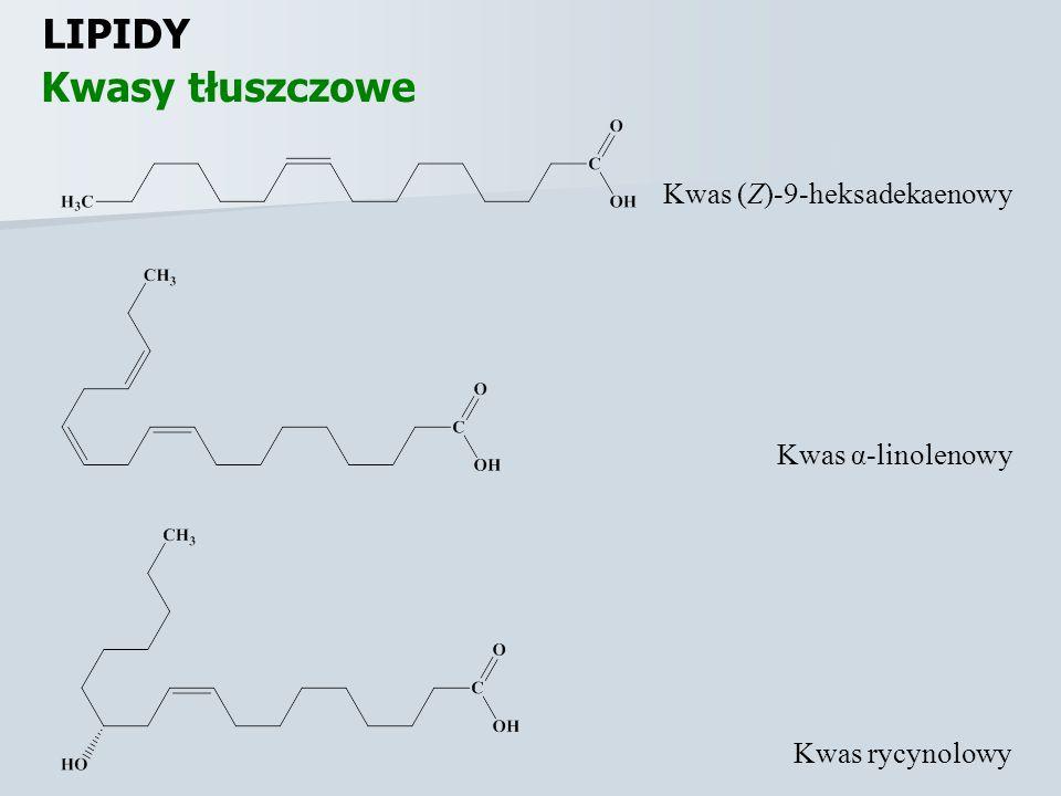 LIPIDY Kwasy tłuszczowe Kwas (Z)-9-heksadekaenowy Kwas α-linolenowy Kwas rycynolowy