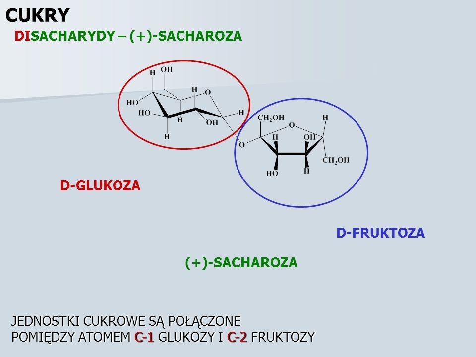 CUKRY DISACHARYDY – (+)-SACHAROZA (+)-SACHAROZA D-GLUKOZA D-FRUKTOZA JEDNOSTKI CUKROWE SĄ POŁĄCZONE POMIĘDZY ATOMEM C-1 GLUKOZY I C-2 FRUKTOZY