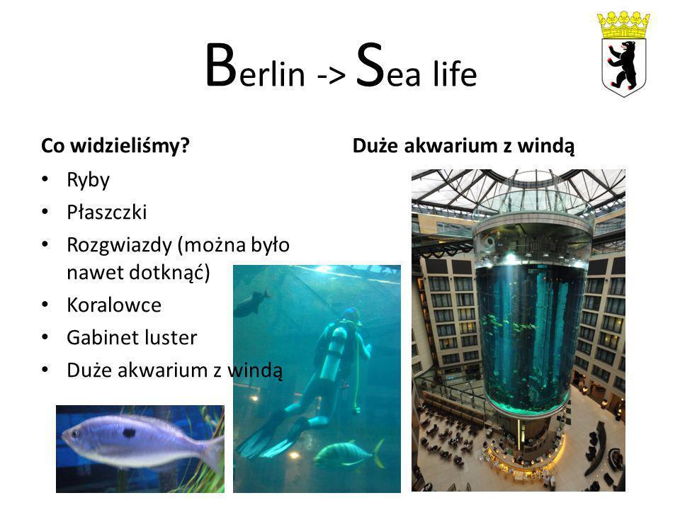 B erlin -> S ea life Co widzieliśmy? Ryby Płaszczki Rozgwiazdy (można było nawet dotknąć) Koralowce Gabinet luster Duże akwarium z windą