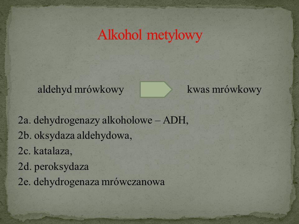 aldehyd mrówkowykwas mrówkowy 2a.dehydrogenazy alkoholowe – ADH, 2b.