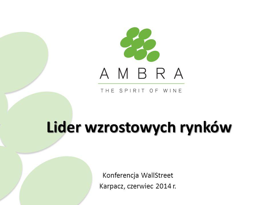 Lider wzrostowych rynków Konferencja WallStreet Karpacz, czerwiec 2014 r.