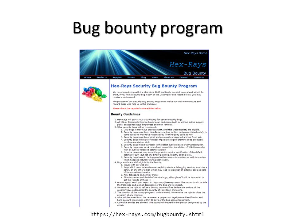 Bug bounty program https://hex-rays.com/bugbounty.shtml