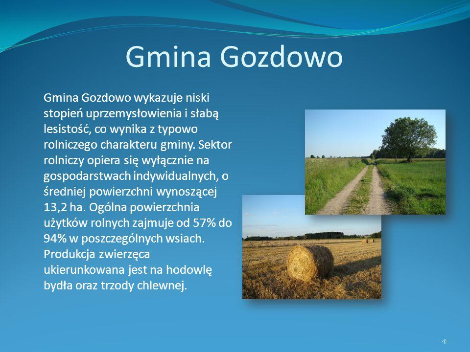 Gmina Gozdowo Gmina Gozdowo wykazuje niski stopień uprzemysłowienia i słabą lesistość, co wynika z typowo rolniczego charakteru gminy. Sektor rolniczy