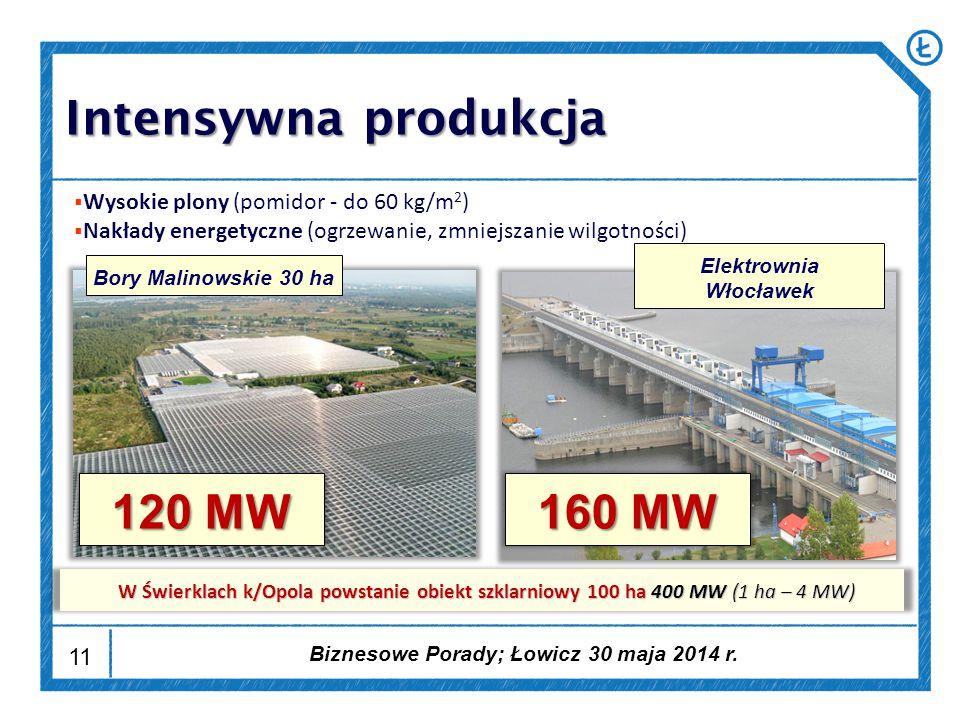 11  Wysokie plony (pomidor - do 60 kg/m 2 )  Nakłady energetyczne (ogrzewanie, zmniejszanie wilgotności) Bory Malinowskie 30 haElektrownia Włocławek 120 MW 160 MW W Świerklach k/Opola powstanie obiekt szklarniowy 100 ha 400 MW (1 ha – 4 MW) Intensywna produkcja Biznesowe Porady; Łowicz 30 maja 2014 r.