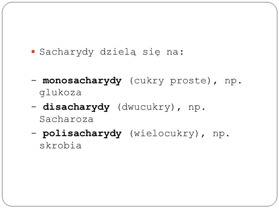 Sacharydy dzielą się na: - monosacharydy (cukry proste), np. glukoza - disacharydy (dwucukry), np. Sacharoza - polisacharydy (wielocukry), np. skrobia