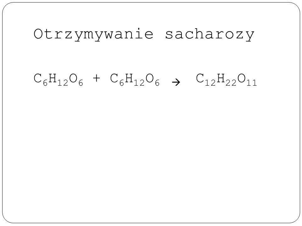Otrzymywanie sacharozy C 6 H 12 O 6 + C 6 H 12 O 6  C 12 H 22 O 11