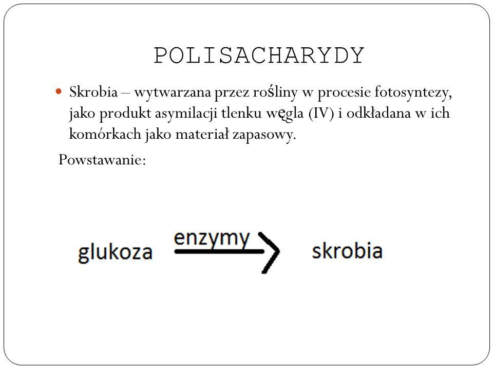 POLISACHARYDY Skrobia – wytwarzana przez ro ś liny w procesie fotosyntezy, jako produkt asymilacji tlenku w ę gla (IV) i odkładana w ich komórkach jak
