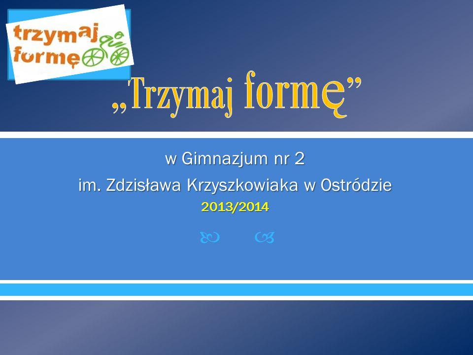  w Gimnazjum nr 2 im. Zdzisława Krzyszkowiaka w Ostródzie 2013/2014