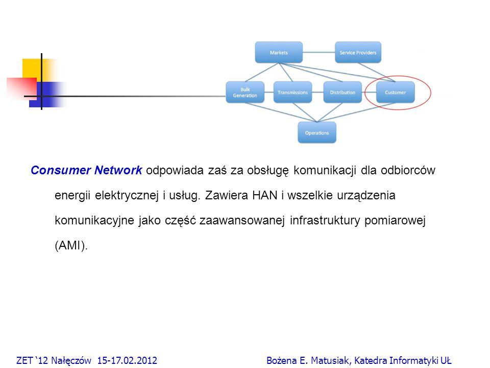 Consumer Network odpowiada zaś za obsługę komunikacji dla odbiorców energii elektrycznej i usług.