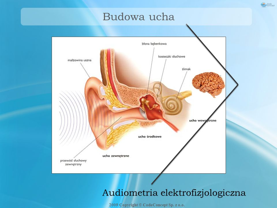 Badanie ABR - stymulacja Stymulacja: trzask toneburst Przetwornik: słuchawki audiologiczne słuchawki wewnątrzuszne wibrator kostny 2009 Copyright © CodeConcept Sp.