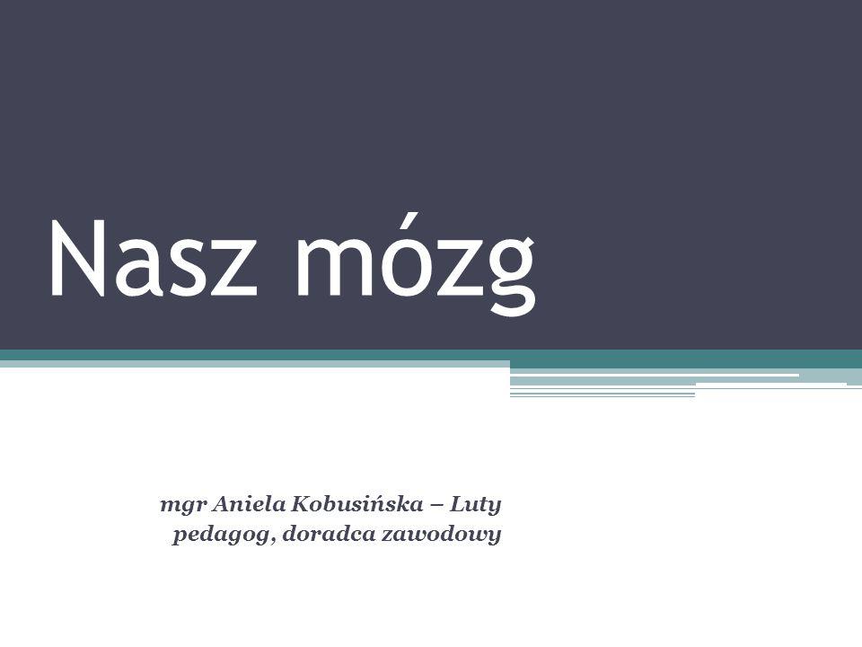 Nasz mózg mgr Aniela Kobusińska – Luty pedagog, doradca zawodowy