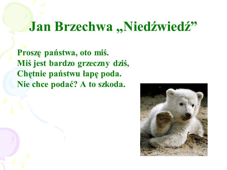 """Jan Brzechwa """"Niedźwiedź"""" Proszę państwa, oto miś. Miś jest bardzo grzeczny dziś, Chętnie państwu łapę poda. Nie chce podać? A to szkoda."""