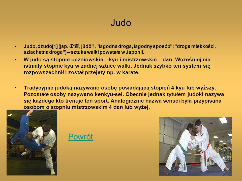 Judo Judo, dżudo[1] (jap.