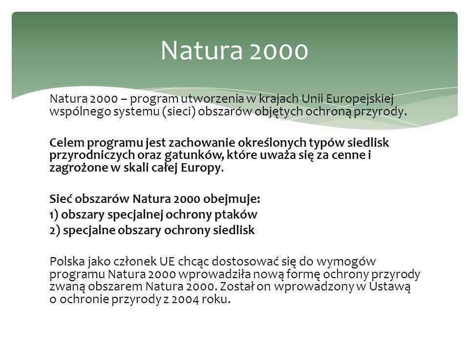 Natura 2000 – program utworzenia w krajach Unii Europejskiej wspólnego systemu (sieci) obszarów objętych ochroną przyrody.