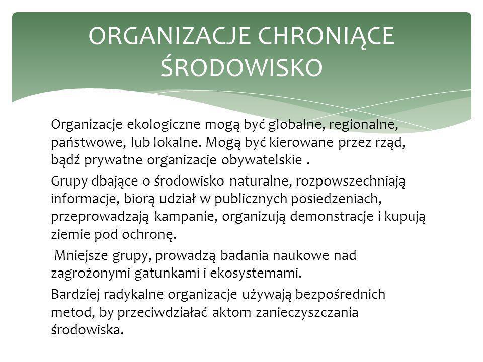 Organizacje ekologiczne mogą być globalne, regionalne, państwowe, lub lokalne. Mogą być kierowane przez rząd, bądź prywatne organizacje obywatelskie.