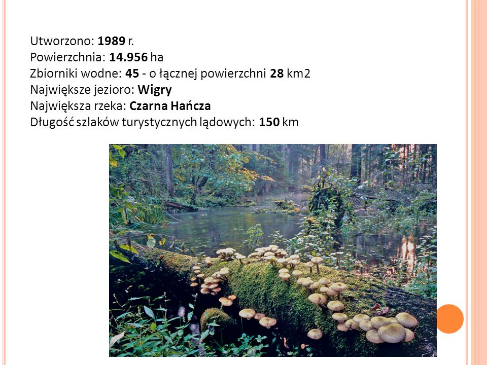 Utworzono: 1989 r. Powierzchnia: 14.956 ha Zbiorniki wodne: 45 - o łącznej powierzchni 28 km2 Największe jezioro: Wigry Największa rzeka: Czarna Hańcz