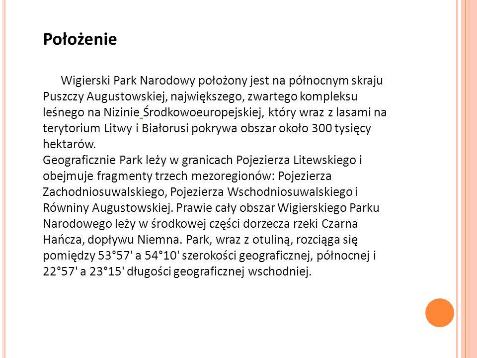 Położenie Wigierski Park Narodowy położony jest na północnym skraju Puszczy Augustowskiej, największego, zwartego kompleksu leśnego na Nizinie Środkow