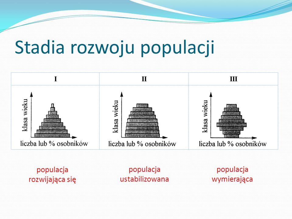 Stadia rozwoju populacji populacja rozwijająca się populacja ustabilizowana populacja wymierająca