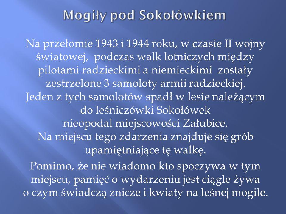 Na przełomie 1943 i 1944 roku, w czasie II wojny światowej, podczas walk lotniczych między pilotami radzieckimi a niemieckimi zostały zestrzelone 3 sa